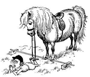 pony jump