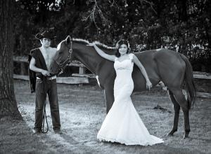 horsehusband