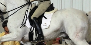 What Is The Correct Stirrup Length For You Dressage Different
